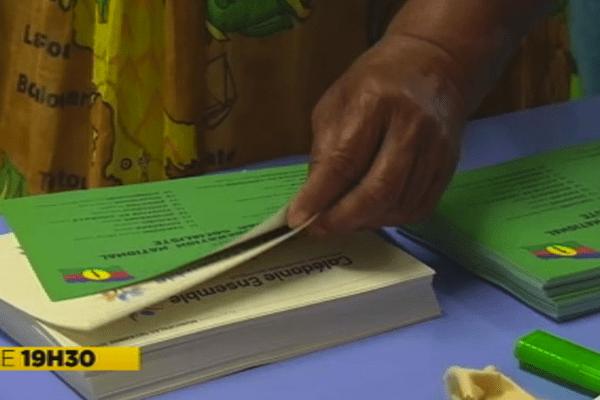 Elections à l'Île des Pins