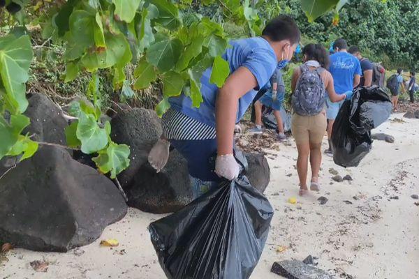 Rikitea : ramassage déchets
