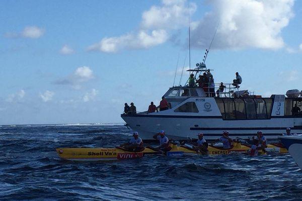 Shell chavire