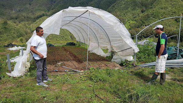 Salazie horticulteur après Fakir