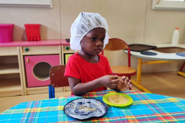 Semaine du goût à Cayenne : dégustation Les papilles en éveil avec 4 saveurs à la crèche de Montabo