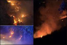 Plusieurs foyers de feux de broussailles à Saint-Pierre.