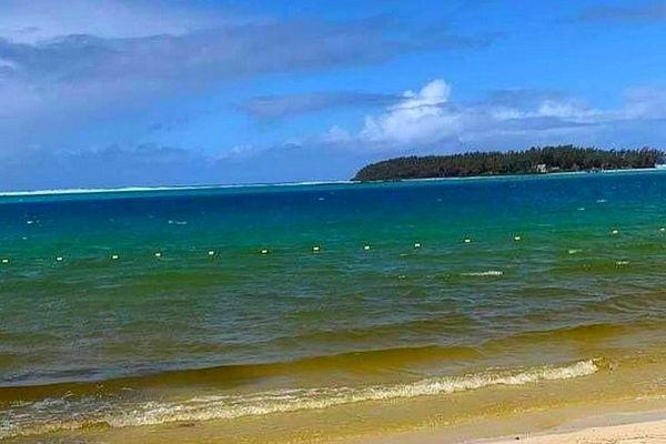 Lagon à Blue-Bay teinté de brun par des micro-algues