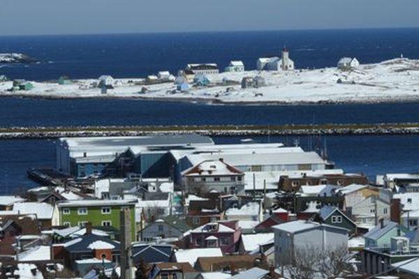 Un hiver en demi-teinte à Saint-Pierre et Miquelon