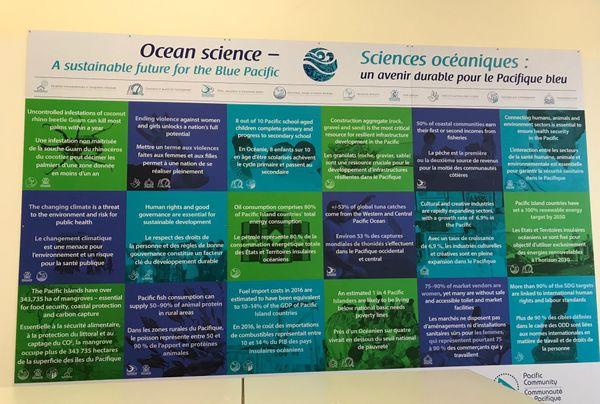Biodiversité en Océanie