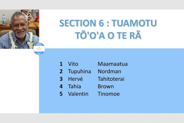 Section 6
