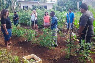 Agriculture Bio : formation des jeunes par un expert de la Nouvelle-Calédonie