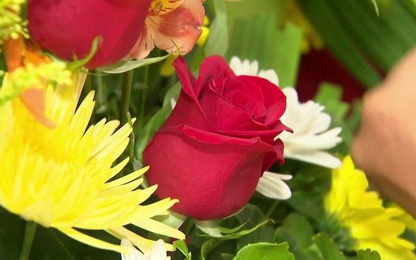 Fleurs - roses rouges