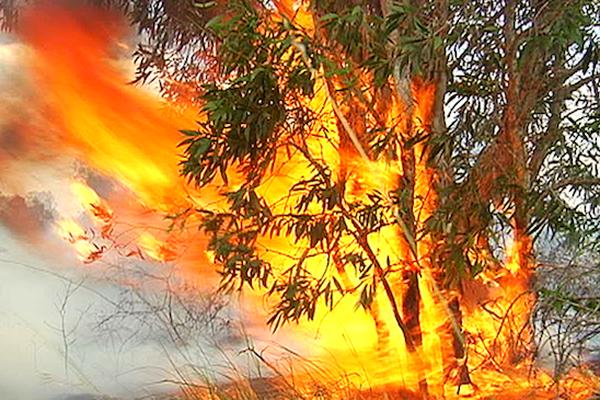 Incendie Boulouparis