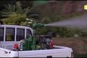 Opération de démoustication à Raiatea