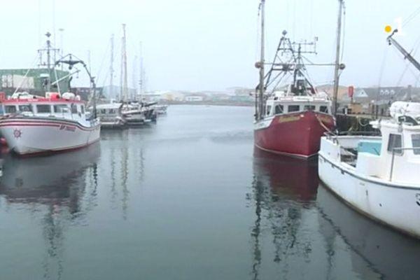 peche bateaux quai saint-pierre