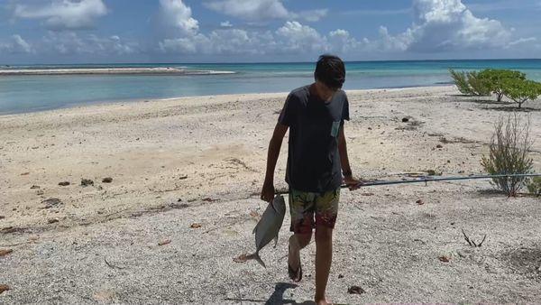 Aller à Tikehau et découvrir la vie belle et simple des îles