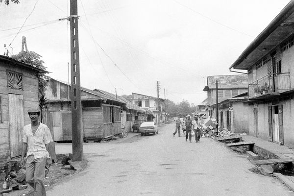 Détails d'une Guyane en changement