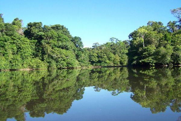 Fleuve Approuague en Guyane