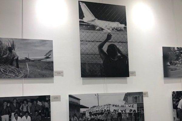 73 photos de Claude Testa