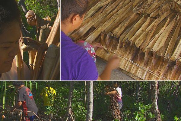 Maiao, l'île aux pandanus