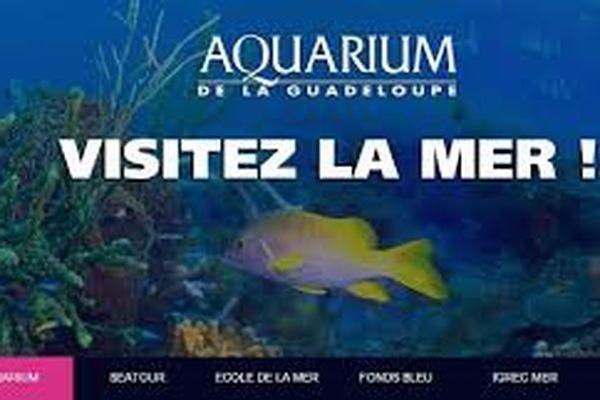 Journée porte ouverte à l'Aquarium