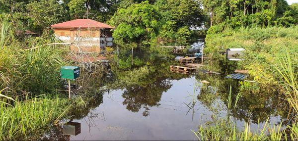 Des maisons inondées