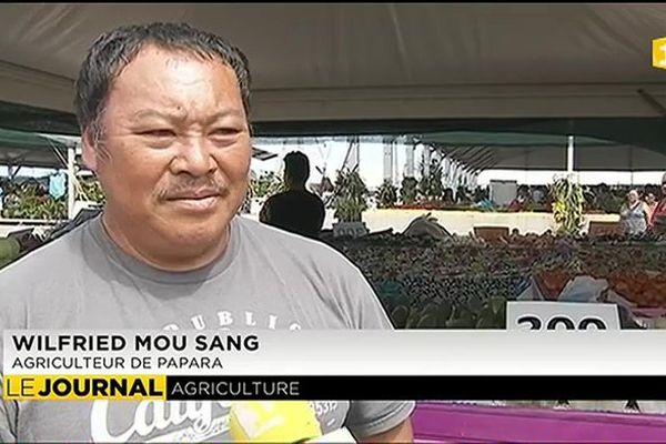 L'ouverture d'une serre par le groupe Wane menace 20 agriculteurs de faillite