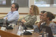 Elus du groupe Calédonie ensemble au Congrès.