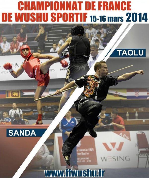 Deux titres de champions de France pour Bryan et Dylan Pausé en Wushu Sanda
