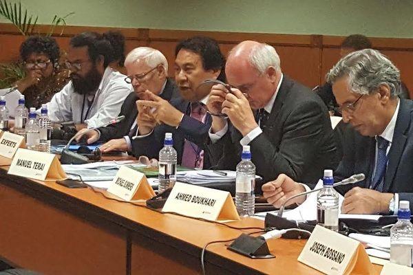 Séminaire du comité de décoonisation des Nations Unies