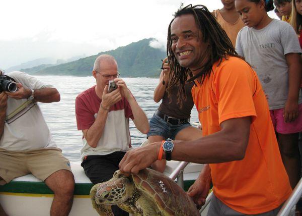 10 ans clinique tortues