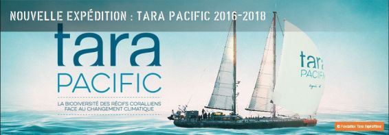 Tara Pacific © Fondation Tara